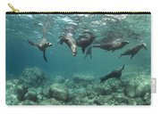 Playful Sealions In Baja Carry-all Pouch