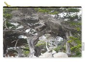 17 Mile Drive Tree Carry-all Pouch