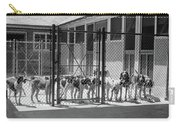 1930s Kennel Yard Full Of Foxhound Dogs Carry-all Pouch