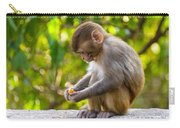 A Baby Macaque Eating An Orange Carry-all Pouch