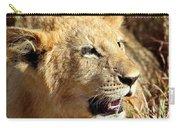 African Lion Cub Portrait Carry-all Pouch
