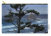Along The Oregon Coast Carry-all Pouch