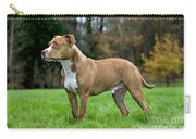 American Staffordshire Terrier Carry-all Pouch