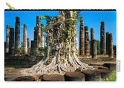 Ancient Temple Ruins Carry-all Pouch