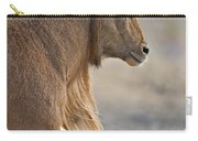 Aoudad Ram  Carry-all Pouch