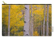 Aspen Trees In A Forest, Telluride, San Carry-all Pouch