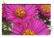 Aster Named September Ruby Carry-all Pouch