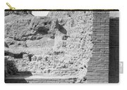 Babylon Ishtar Gate Carry-all Pouch