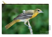 Baltimore Oriole Icterus Galbula Carry-all Pouch
