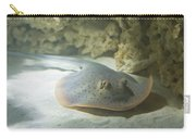 Blue Spotted Fantail Ray  Carry-all Pouch