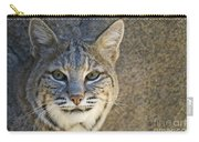 Bobcat Carry-all Pouch by William H. Mullins