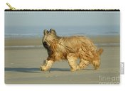 Briard Dog Carry-all Pouch