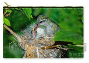 Broad-billed Hummingbird And Young Carry-all Pouch