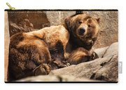 Brown Bear Carry-all Pouch by Chris Flees
