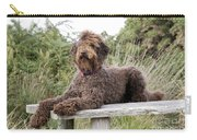 Brown Labradoodle Carry-all Pouch