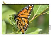 Busy Butterfly Carry-all Pouch