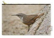 Canyon Wren Carry-all Pouch