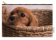Cavalier King Charles Spaniel Puppy In Basket Carry-all Pouch