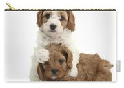 Cavapoo Puppies Hugging Carry-all Pouch