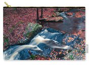 Chesterfield Gorge New Hampshire Carry-all Pouch