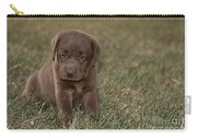 Chocolate Labrador Puppy Carry-all Pouch by Linda Freshwaters Arndt