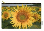 Common Sunflower Helianthus Annuus Carry-all Pouch