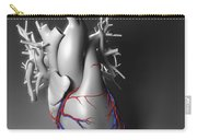 Coronary Vessels Carry-all Pouch