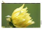 Dahlia Named Kelvin Floodlight Carry-all Pouch