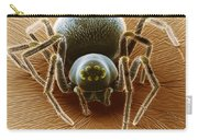 Dictynid Spider Carry-all Pouch by David M. Phillips