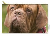 Dogue De Bordeaux Carry-all Pouch