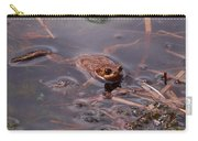 European Common Brown Frog Carry-all Pouch