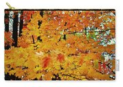 Fall Colors 2014-3 Carry-all Pouch