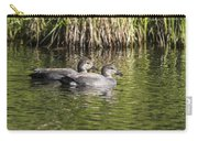 Gadwall Pair Carry-all Pouch