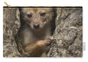 Golden Jackal Canis Aureus Cubs Carry-all Pouch
