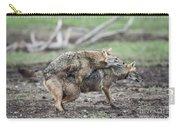 Golden Jackal Canis Aureus Carry-all Pouch