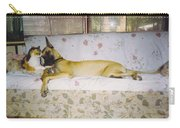 Great Dane And Calico Cat Carry-all Pouch