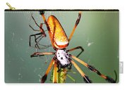 Male And Female Silk Spiders With Prey Carry-all Pouch