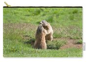 Marmots Carry-all Pouch