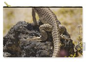 Mojave Desert Iguana Carry-all Pouch