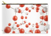 Molecular Model Carry-all Pouch