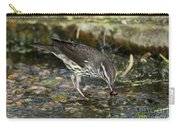 Northern Waterthrush Carry-all Pouch