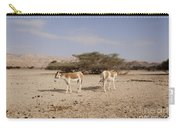 Onager Equus Hemionus Carry-all Pouch