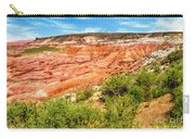 Painted Desert National Park Panorama Carry-all Pouch