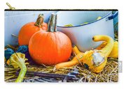 Pumpkins Decorations Carry-all Pouch