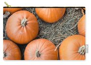 Pumpkins Carry-all Pouch
