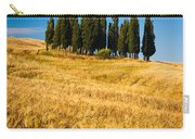 San Quirico D'orcia Carry-all Pouch