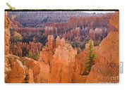 Sandstone Hoodoos Bryce Canyon  Carry-all Pouch