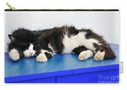 Sleeping Cat In Sifnos Island Carry-all Pouch