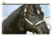 Stallion Carry-all Pouch by Paul Tagliamonte