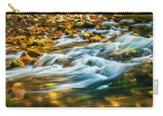 Stream Fall Colors Great Smoky Mountains Painted  Carry-all Pouch